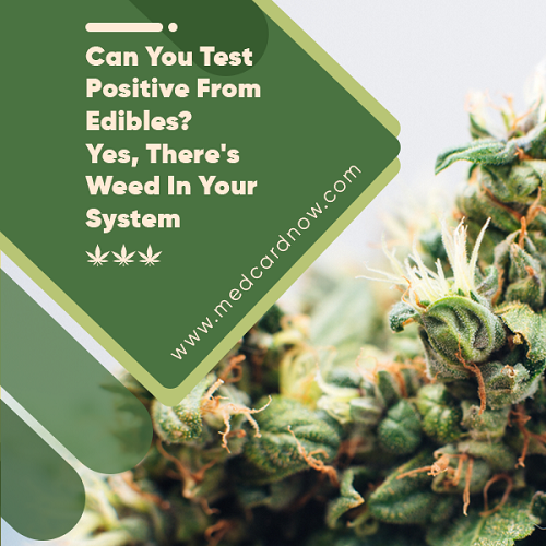can you test positive from edibles